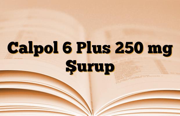 Calpol 6 Plus 250 mg Şurup