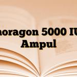 Choragon 5000 IU 3 Ampul