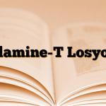 Clamine-T Losyon