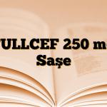 FULLCEF 250 mg Saşe