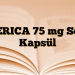 GERICA 75 mg Sert Kapsül