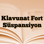 Klavunat Fort Süspansiyon