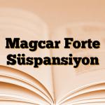 Magcar Forte Süspansiyon