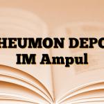 RHEUMON DEPOT IM Ampul