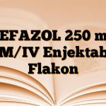 SEFAZOL 250 mg IM/IV Enjektabl Flakon