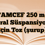 TAMCEF 250 mg Oral Süspansiyon için Toz (şurup)