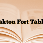 Bakton Fort Tablet