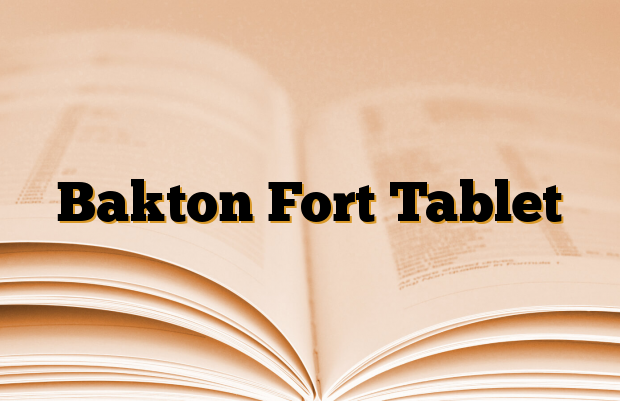 Bakton Fort Tablet
