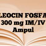 CLEOCIN FOSFAT 300 mg IM/IV Ampul