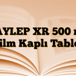 DAYLEP XR 500 mg Film Kaplı Tablet