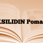 KSILIDIN Pomad