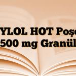 TYLOL HOT Poşet 500 mg Granül