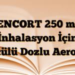 XENCORT 250 mcg İnhalasyon İçin Ölçülü Dozlu Aerosol