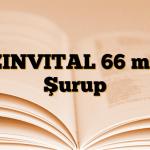 ZINVITAL 66 mg Şurup