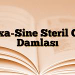 Dexa-Sine Steril Göz Damlası