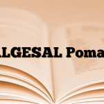ALGESAL Pomad