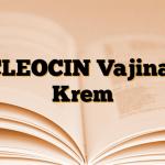 CLEOCIN Vajinal Krem