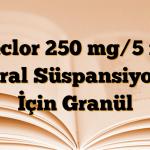 Ceclor 250 mg/5 ml Oral Süspansiyon İçin Granül