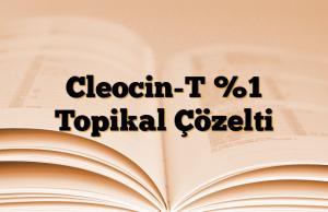 Cleocin-T %1 Topikal Çözelti