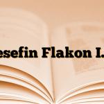 Desefin Flakon I.V.