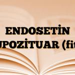 ENDOSETİN SUPOZİTUAR (fitil)