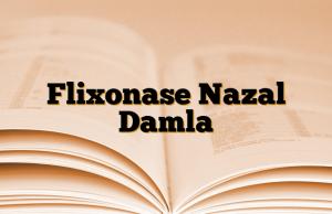 Flixonase Nazal Damla
