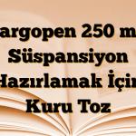 Largopen 250 mg Süspansiyon Hazırlamak İçin Kuru Toz