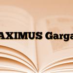 MAXIMUS Gargara