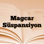 Magcar Süspansiyon