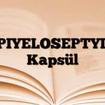PIYELOSEPTYL Kapsül