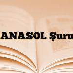 SANASOL Şurup
