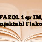 SEFAZOL 1 gr IM/IV Enjektabl Flakon