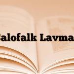 Salofalk Lavman