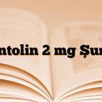 Ventolin 2 mg Şurup