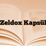 Zeldox Kapsül