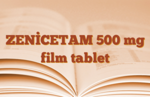 ZENİCETAM 500 mg film tablet